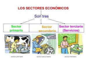 sectores-econmicos