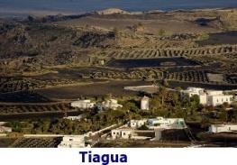 tiagua