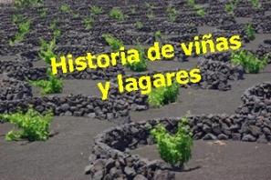 historia-de-las-vinas-y-lagares