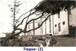 tiagua-7